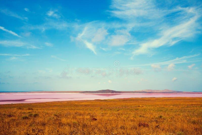 Lago rosa in un deserto fotografia stock