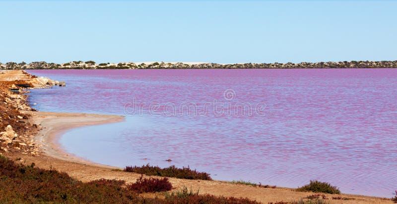 Lago rosado cerca del puerto Gregory fotografía de archivo