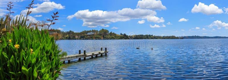 Lago Rotoiti, Nuova Zelanda fotografia stock libera da diritti