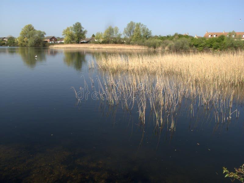 Lago Rudd, poca reserva de naturaleza de Paxton imagen de archivo libre de regalías