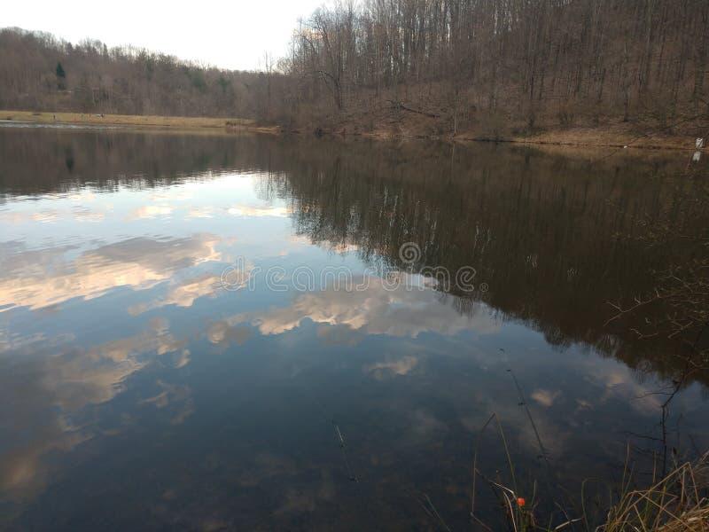 Lago run del perro a finales de marzo fotografía de archivo
