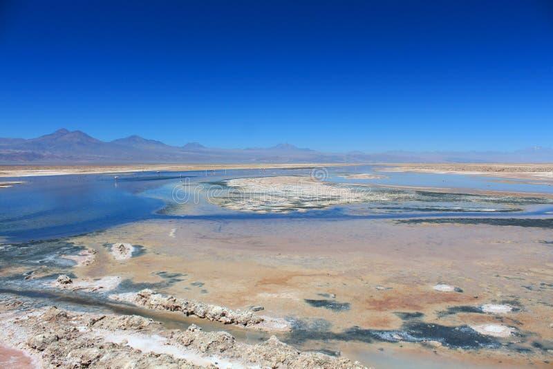 Lago salado en el desierto de Atacama imagen de archivo
