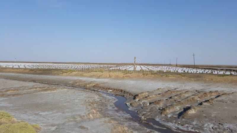 Lago salato Baskunchak immagine stock libera da diritti