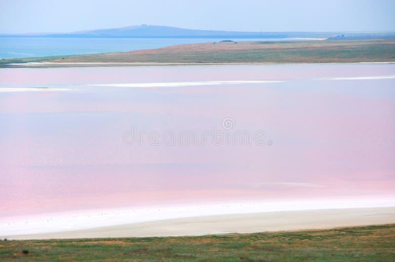 Lago salato costiero Koyashskoye fotografie stock
