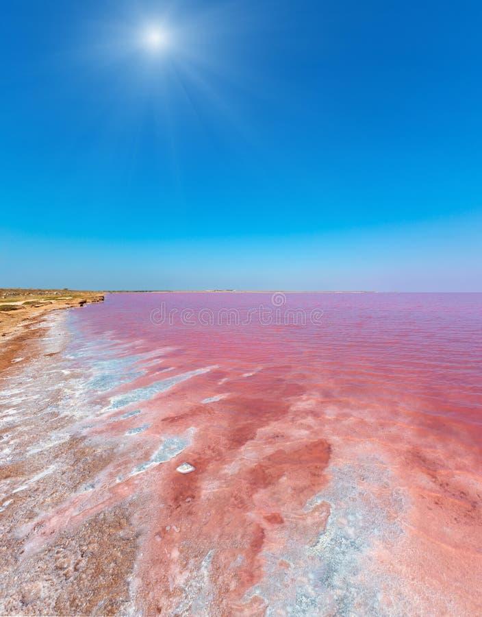Lago salato rosa Syvash, Ucraina immagine stock libera da diritti