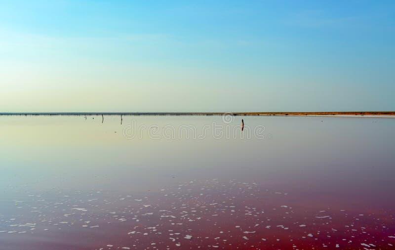 Lago salt imagens de stock royalty free