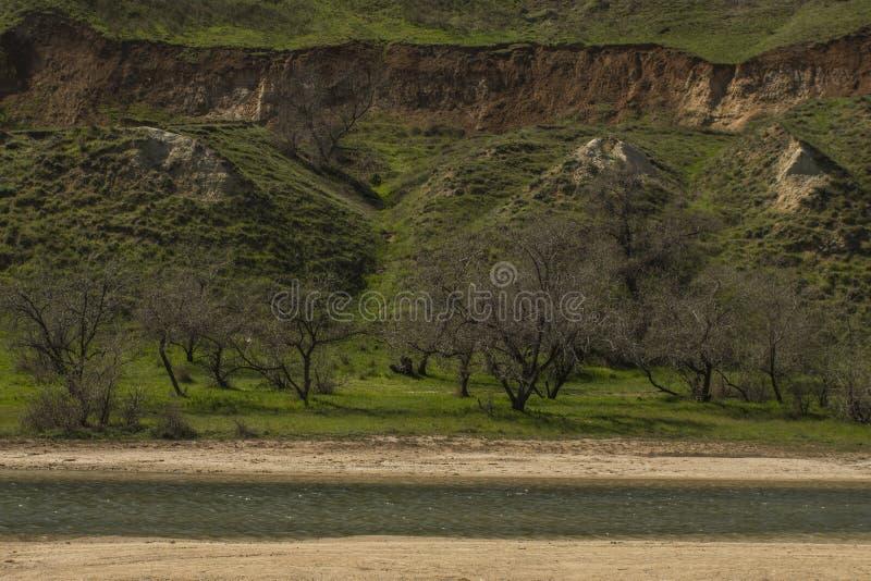 Lago salt e colline verdi e scogliera immagine stock libera da diritti