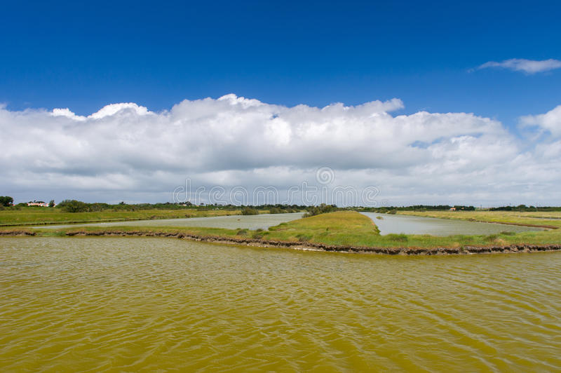 Lago salt no console francês de Oleron imagem de stock