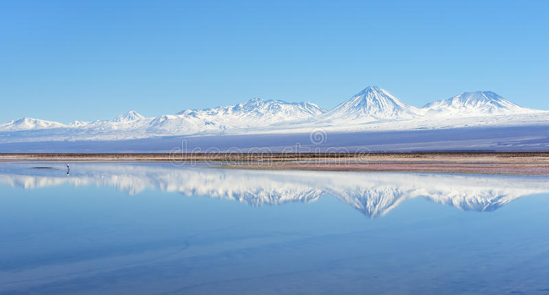 Lago salt no deserto de Atacama imagem de stock royalty free