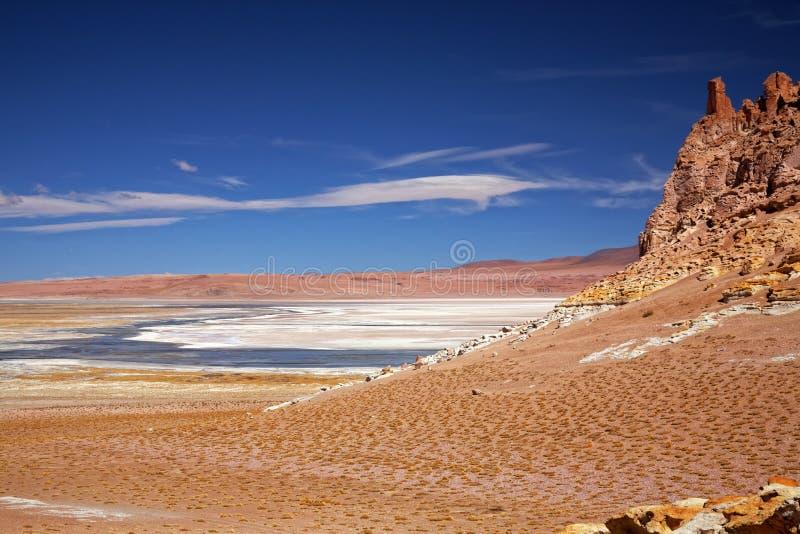 Lago salt Salar de Tara, o Chile fotos de stock royalty free
