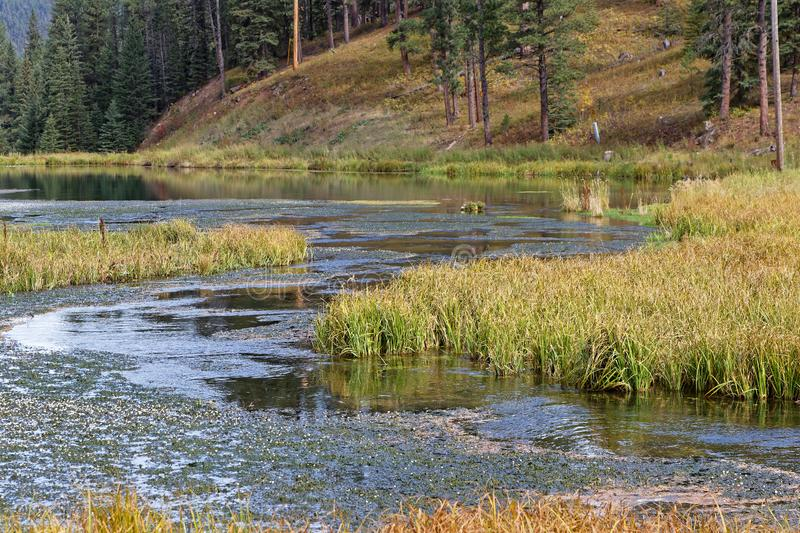 Lago Samll del barranco del Spearfish, Dakota del Sur fotografía de archivo