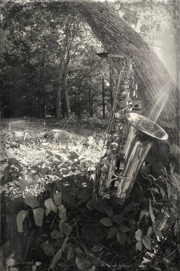 Lago saxophone fotografía de archivo