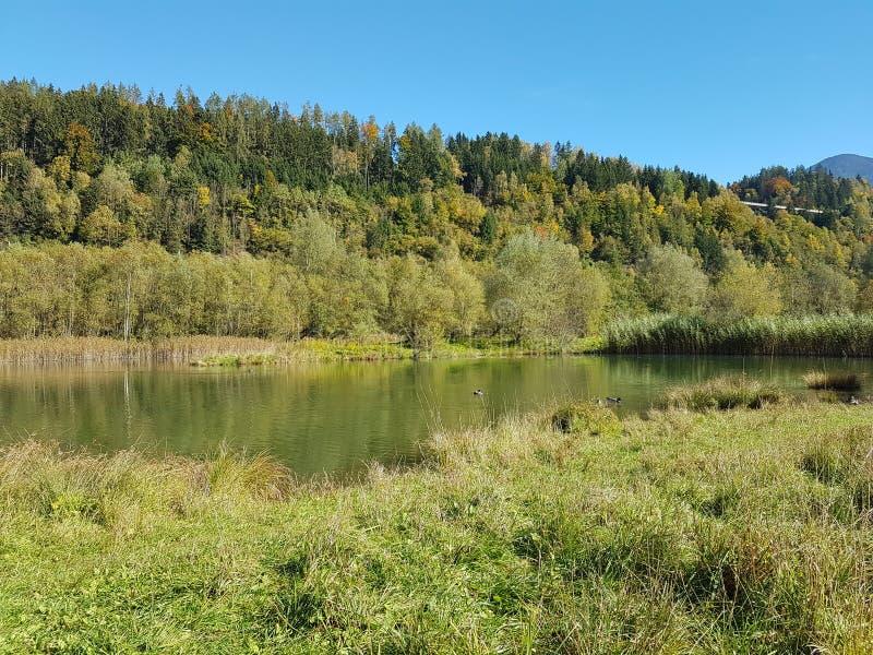 Lago sbalorditivo nel mezzo dell'autunno immagine stock