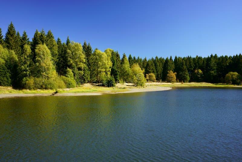 Lago scenico nella foresta vicino a Clausthal-Zellerfeld in Bassa Sassonia, Harz, Germania fotografie stock