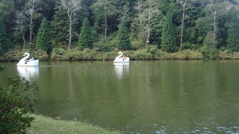 Lago-Schwarze lizenzfreie stockfotos