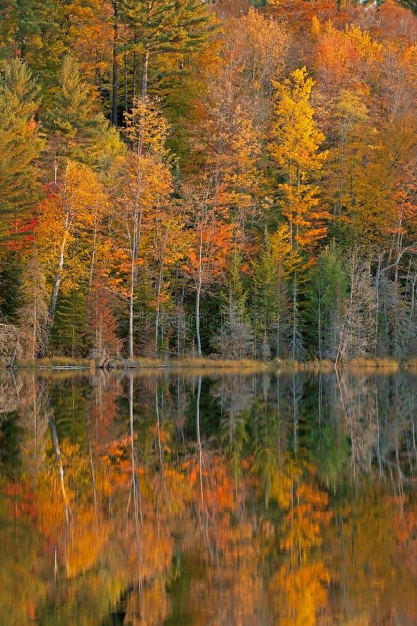 Lago scout di riflessioni di autunno fotografie stock