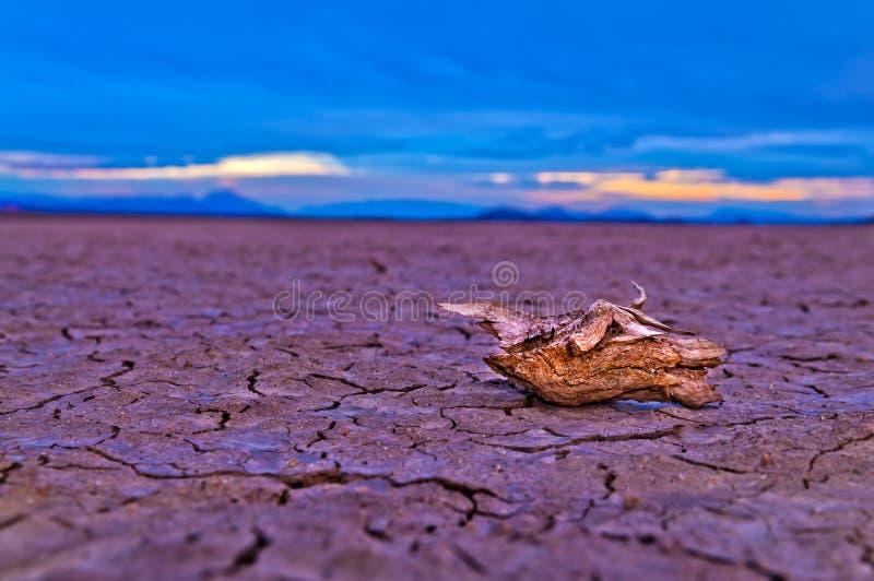 Lago seco en Death Valley foto de archivo libre de regalías