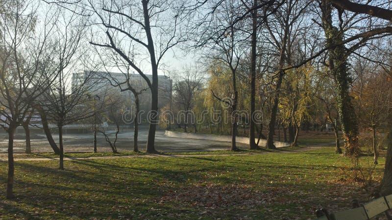 Lago seco en parque en otoño imagen de archivo libre de regalías