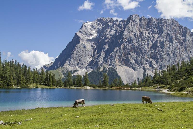 Lago Seeben e Zugspitze fotografia stock