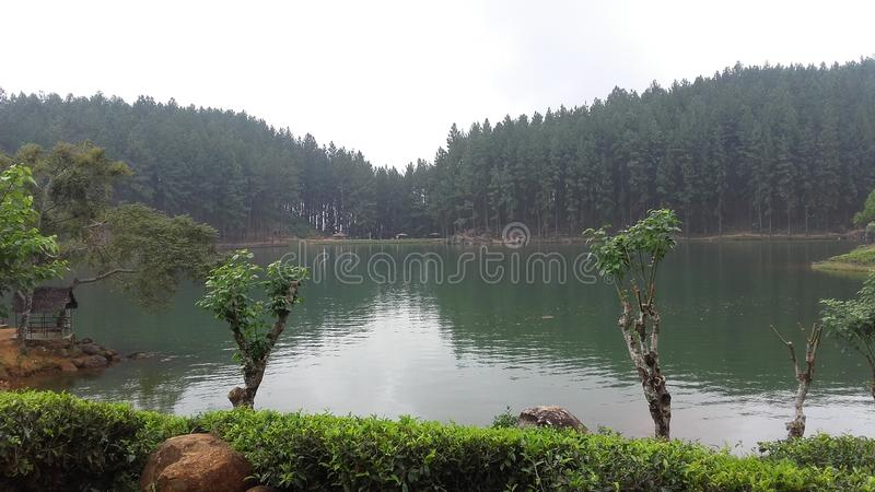 Lago Sembuwatta, proprietà di Elkaduwa, Sri Lanka fotografia stock