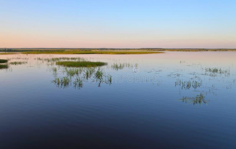Lago Sestroretsky Razliv wetland en la puesta del sol fotos de archivo libres de regalías