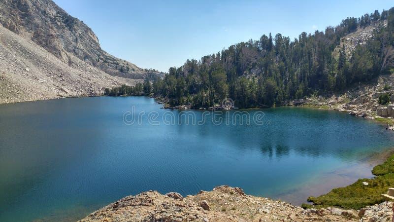 Lago sheep immagini stock libere da diritti