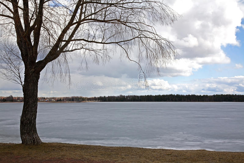 Lago Siljan in Mora sweden fotografie stock