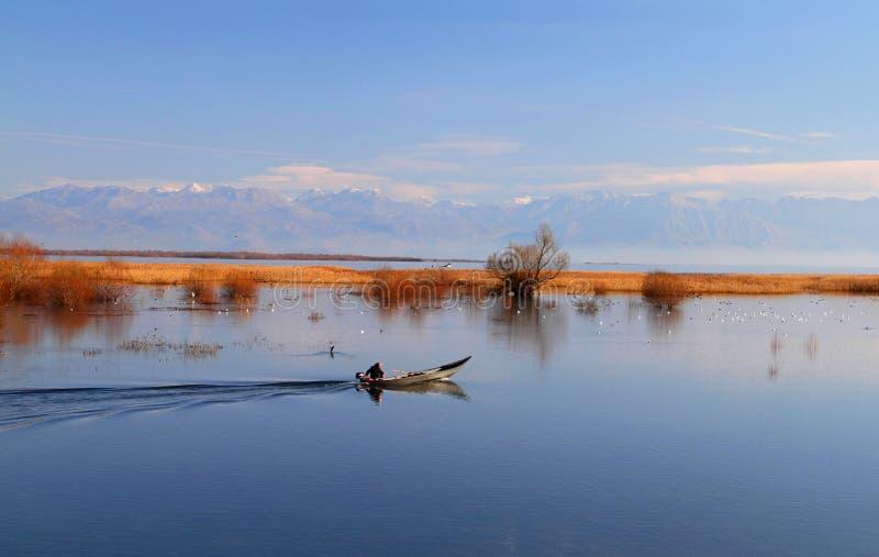 Lago Skadar immagini stock libere da diritti