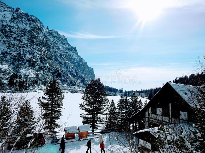 Lago snow imagens de stock royalty free