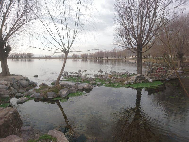 Lago solo foto de archivo