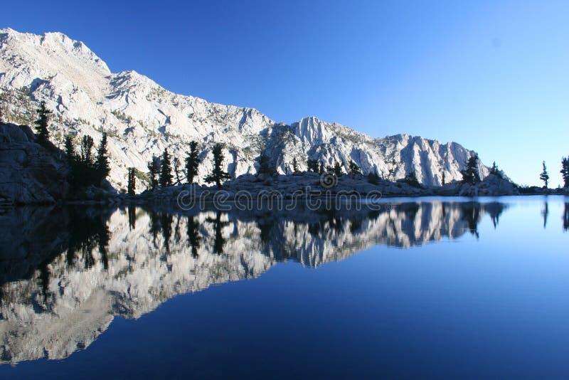 Lago solo pine fotografia stock libera da diritti
