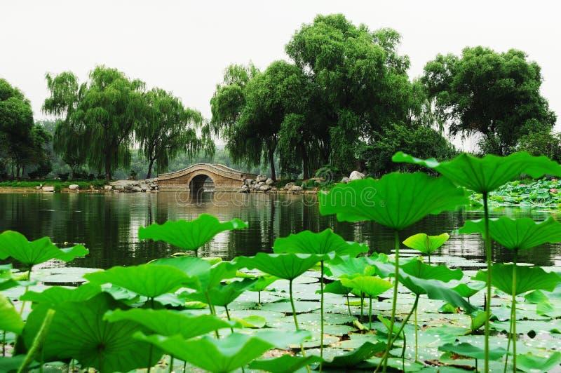 Lago in sosta fotografie stock libere da diritti