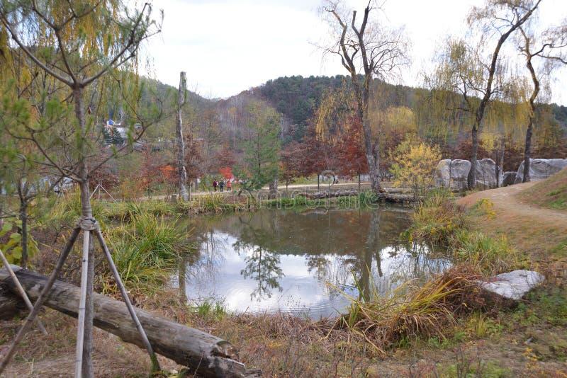 Lago south Korea dell'isola di Namisum immagine stock libera da diritti