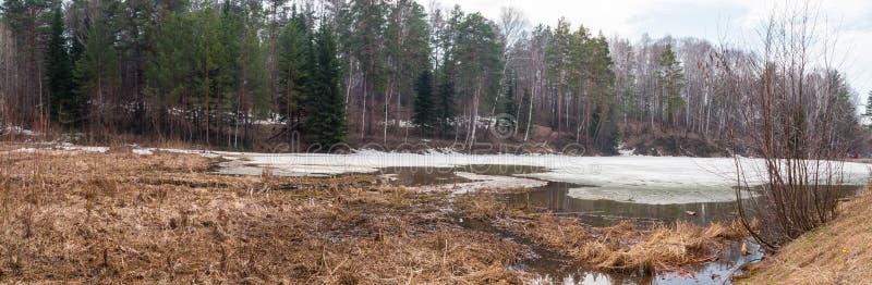 Lago spring en Novosibirsk Akademgorodok fotografía de archivo libre de regalías