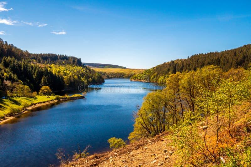 Lago springtime con visiones imponentes fotografía de archivo