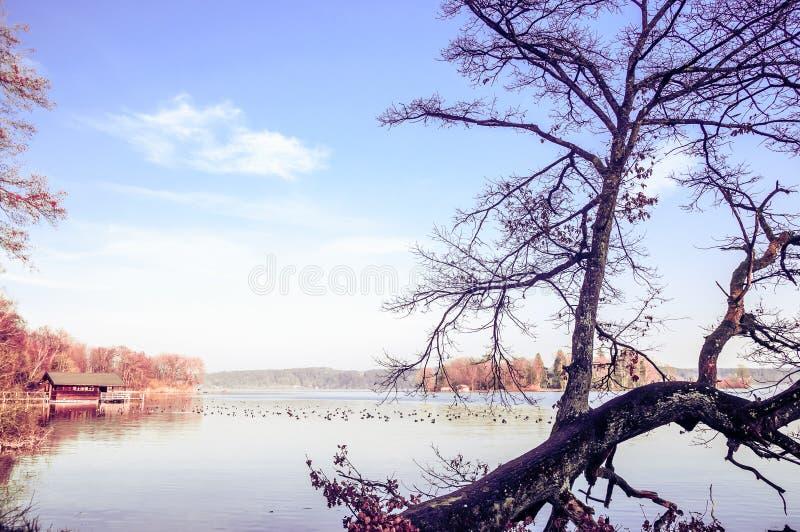Lago Starnberg no outono fotografia de stock