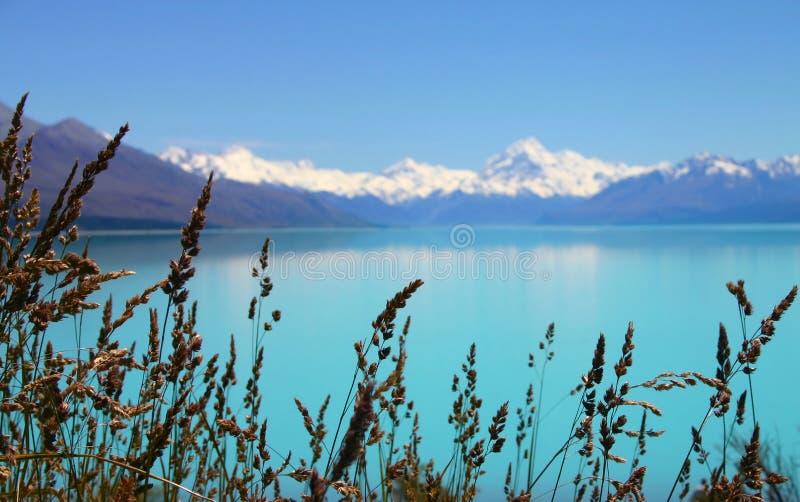 Download Lago Strabiliante Della Montagna Fotografia Stock - Immagine di supporto, paesaggio: 3886330
