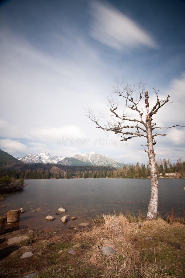 Lago strbske pleso imagem de stock