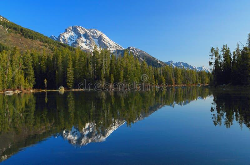 Lago string e montagem Moran, parque nacional grande de Teton, Wyoming foto de stock royalty free