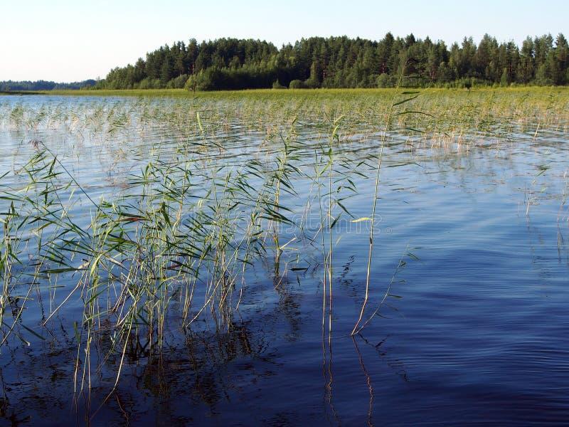 Lago Suecia Siljan fotografía de archivo libre de regalías