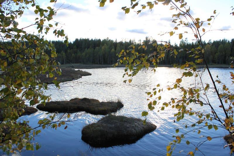 Lago sueco foto de archivo libre de regalías