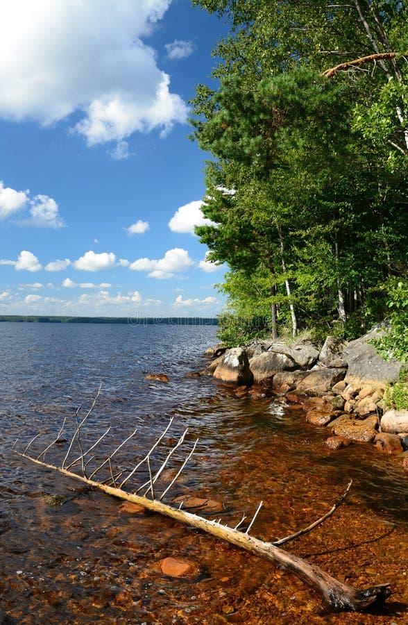 Lago sueco del verano fotografía de archivo