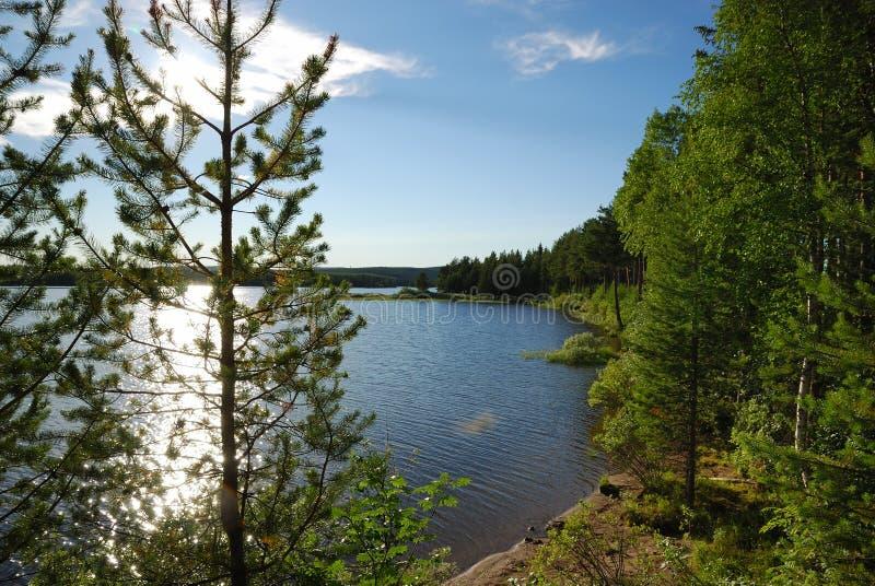 Lago sueco no por do sol imagem de stock