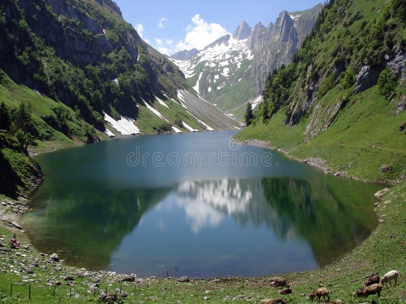 Lago suizo mountain fotos de archivo libres de regalías