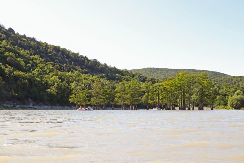 Lago Sukko Região de Krasnodar Rússia Opinião o cipreste original fotos de stock