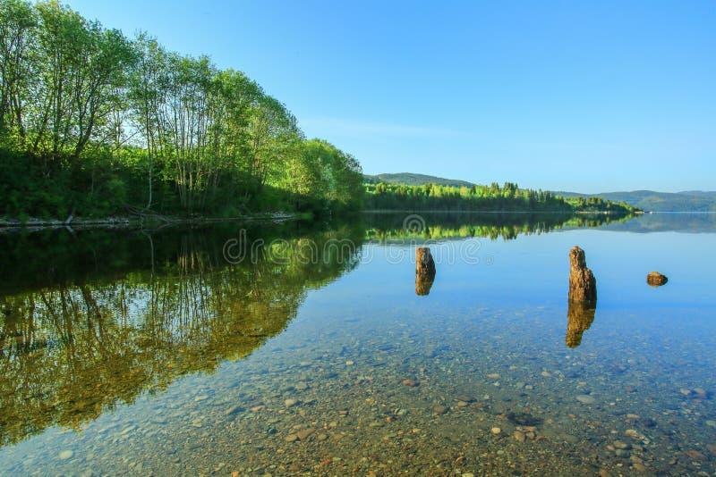 Lago summer fotos de archivo libres de regalías