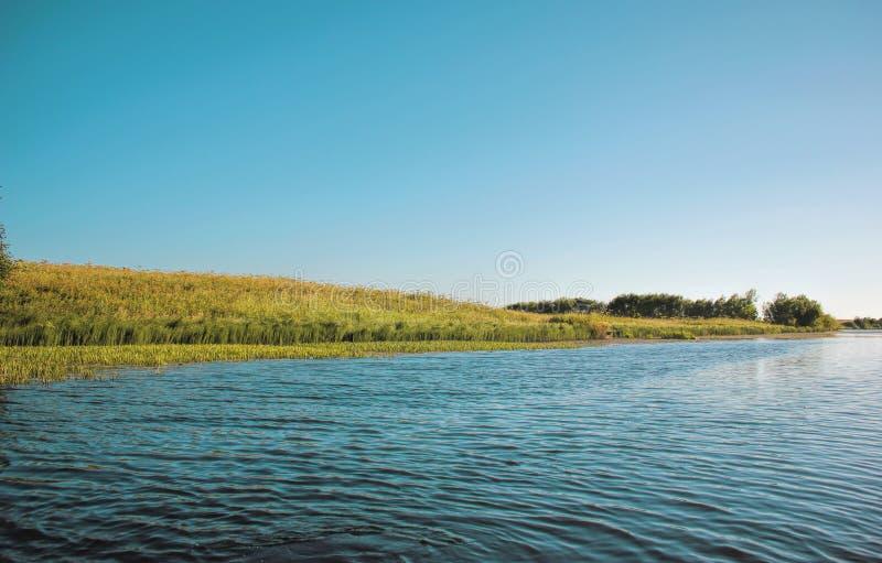 Lago summer vicino al campo con erba verde, la vista dalla barca sull'acqua immagini stock