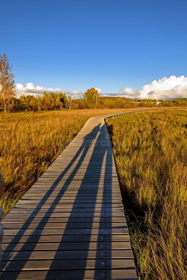 Lago Sun y trayectoria del tablón en el otoño fotografía de archivo libre de regalías