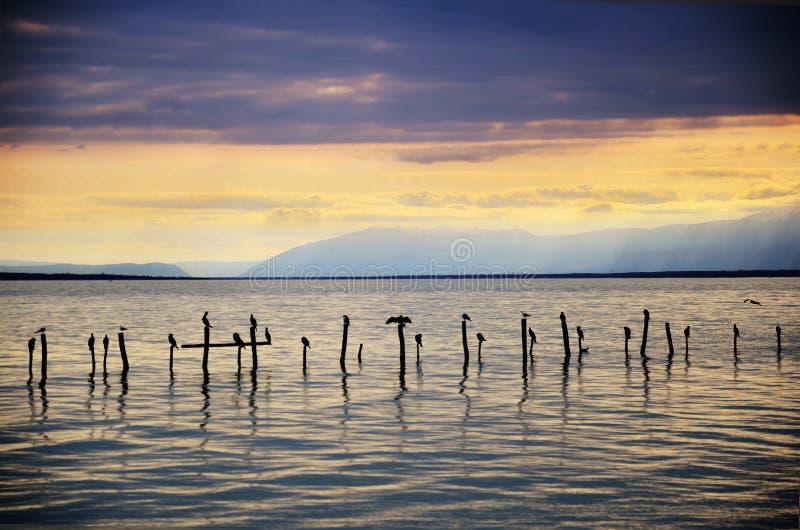 Lago svizzero con il tramonto tempestoso e gli uccelli sugli accatastamenti fotografia stock