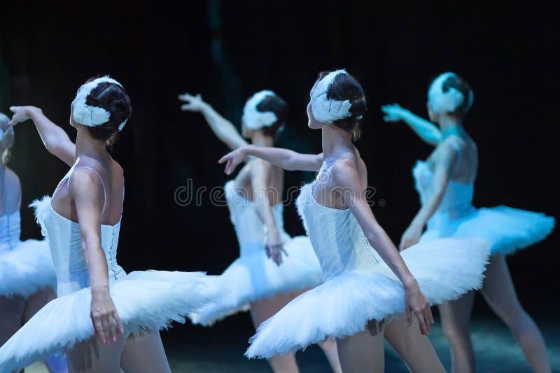 Lago swan del ballet declaración Bailarinas en el movimiento imagen de archivo